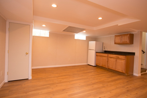 A complete finished basement system in a Princeton home